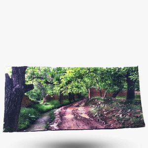 تابلو فرش کلاریس سایز ۱۰۰x50 کد z7037